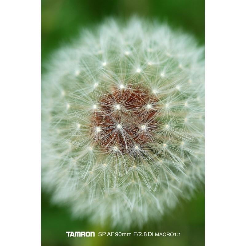 Tamron SP AF 90mm f/2.8 Di Macro objektiiv Nikonile