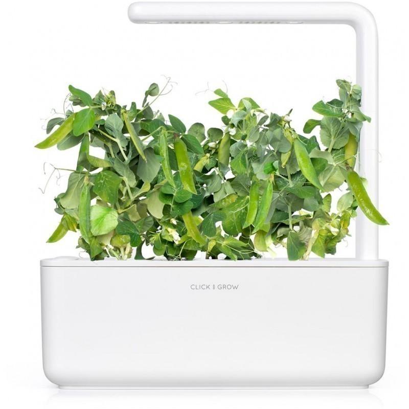 Click & Grow Smart Garden refill Hernes 3tk