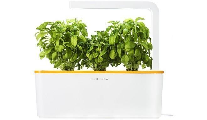 Click & Grow Smart Herb стартовый комплект, оранжевый