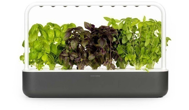 Click & Grow Smart Garden 9, grey