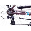 Linnajalgratas meestele 21 L ROMET WAGANT 1 pruun