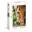 500 pcs Bengal tiger cub metween its mothers leg