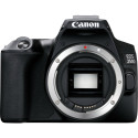 Canon EOS 250D kere, must