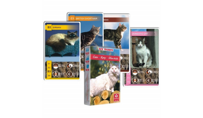 Cartamundi mängukaardid Quartet Cats