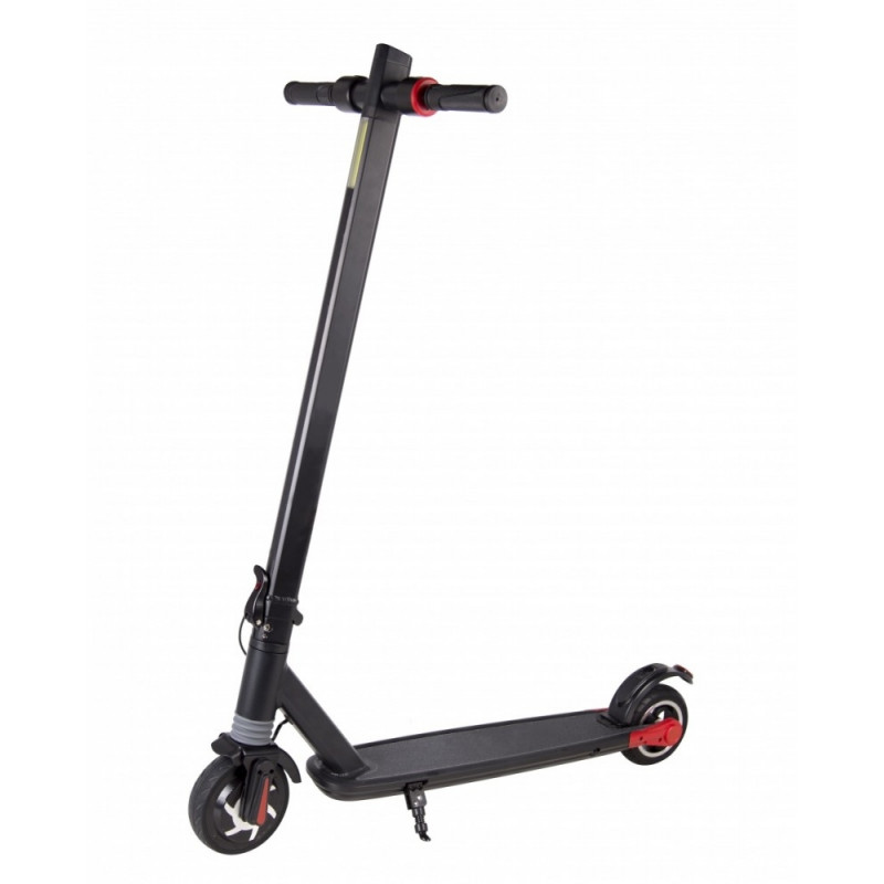 Electric Scooter FS10 Axe