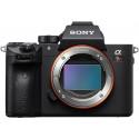 Sony a7R III + Tamron 28-75mm f/2.8