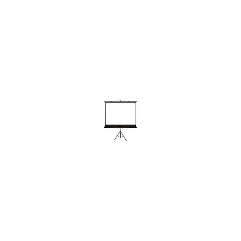 4WORLD 08145 4World Projection screen with stand 170x127 (84,4:3) Matt White