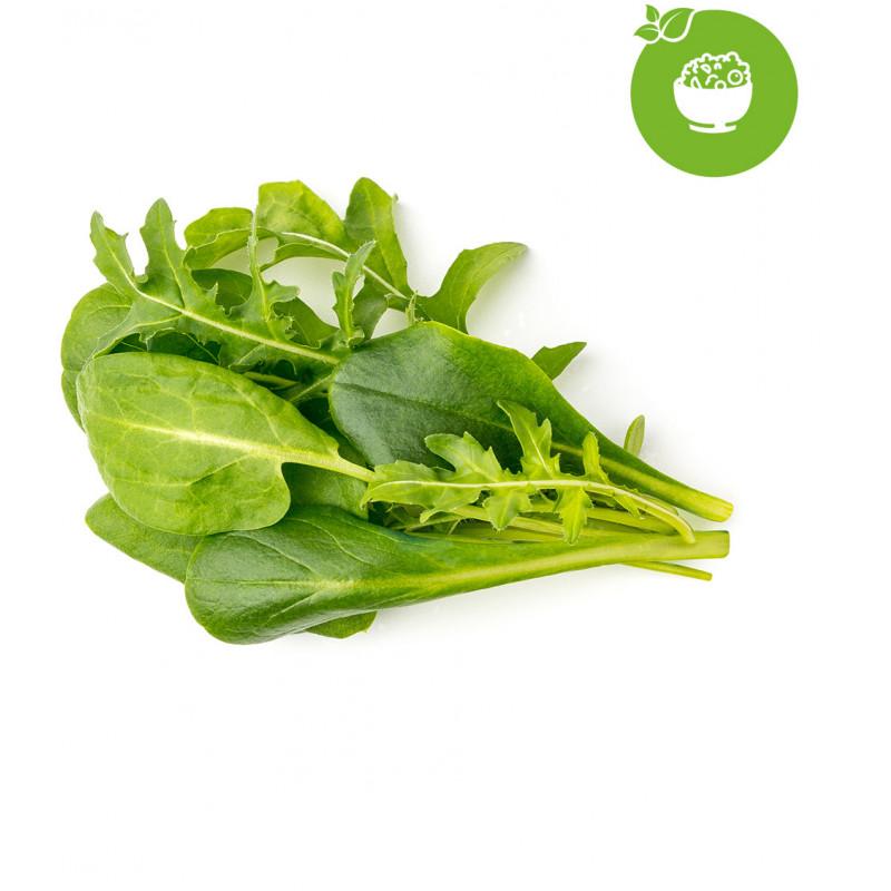 Click & Grow Plant Pod Salad Mix 9tk