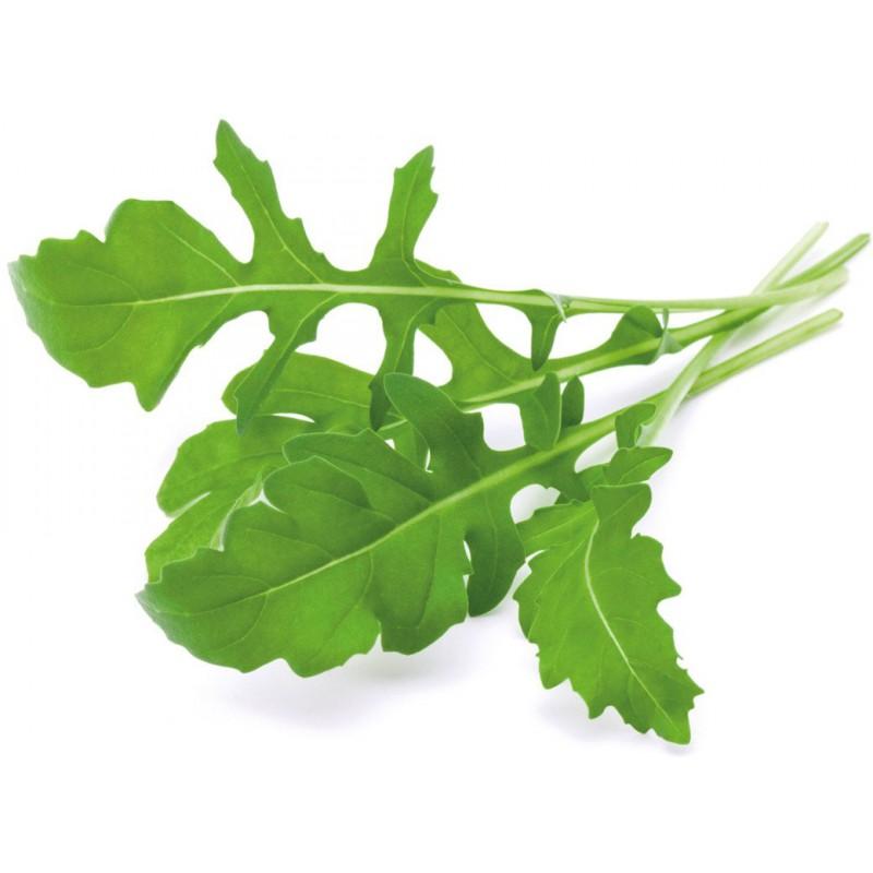 Click & Grow Smart Garden refill Rukola 3tk