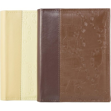 Album B 10x15/200M Leather