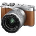 Fujifilm X-M1 + 16-50mm, pruun
