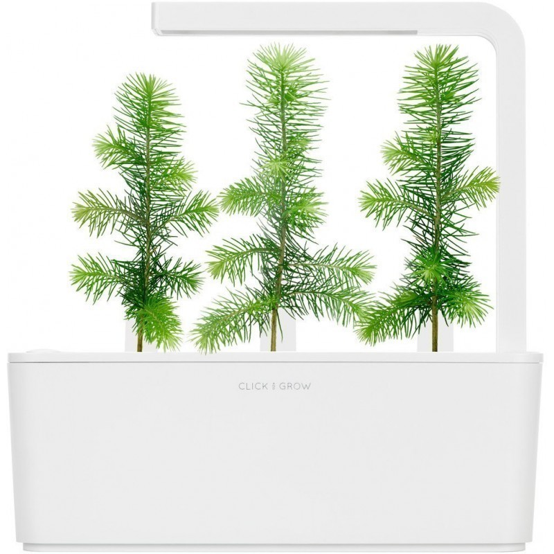 Click & Grow Smart Garden refill Kuusk 3tk