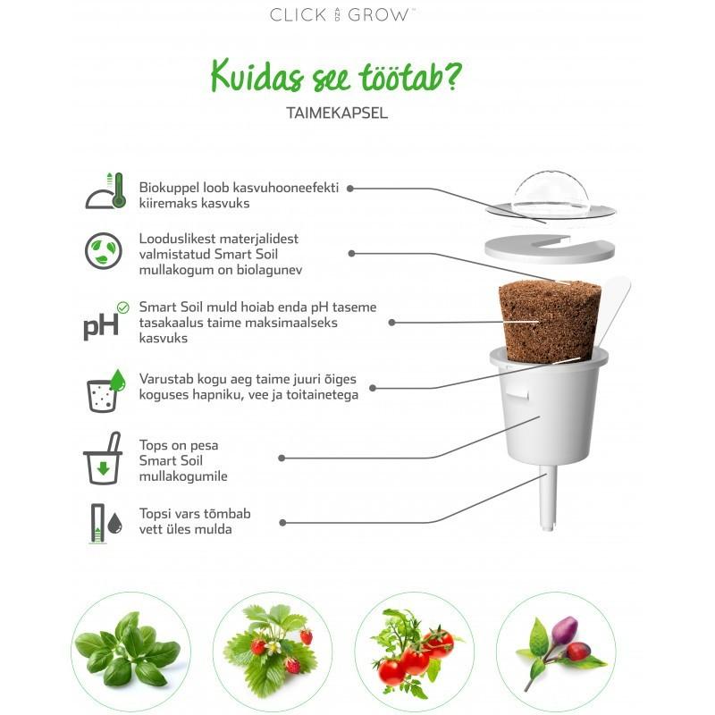 Click & Grow Smart Garden refill Cornflower 3pcs
