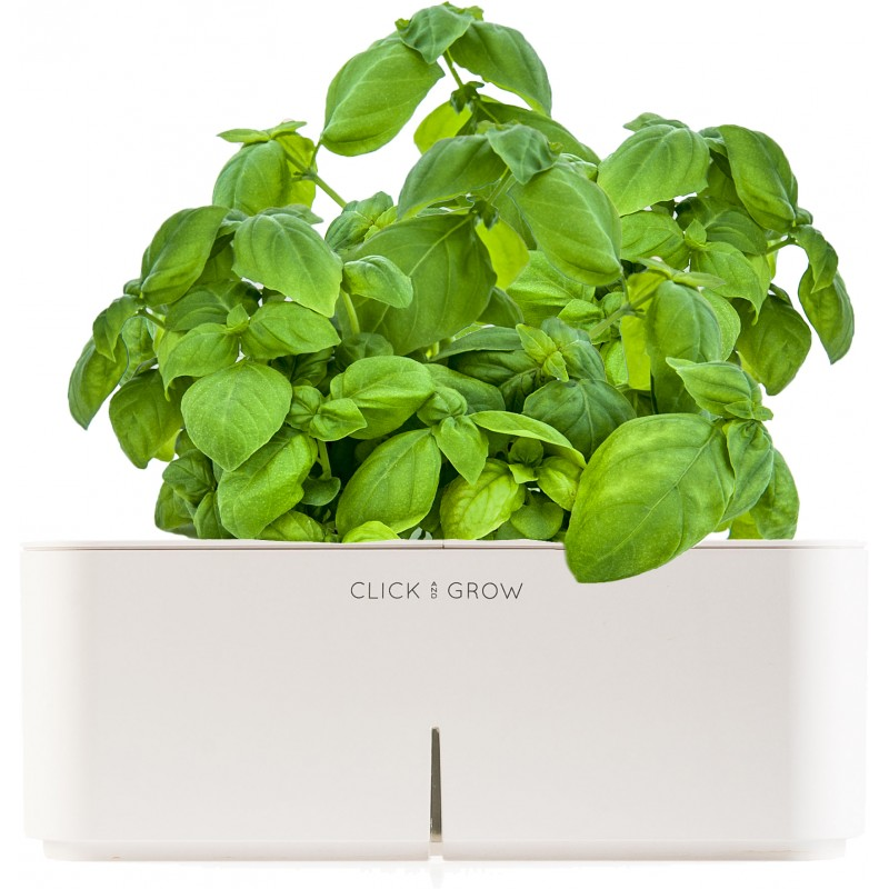 click grow smartpot basiilik click grow stardikomplektid photopoint. Black Bedroom Furniture Sets. Home Design Ideas